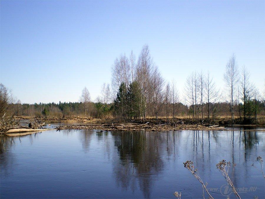 Красоты Мещерского края. Река Гусь 7