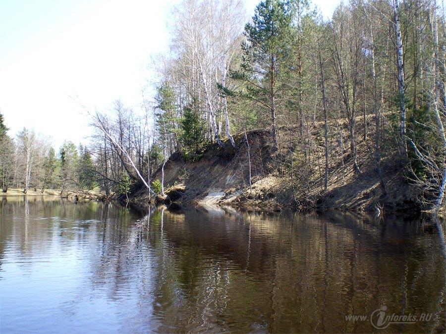 Красоты Мещерского края. Река Гусь 9
