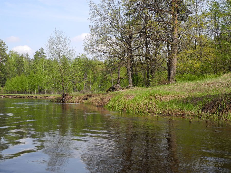 Река Колпь Мещерского края 31