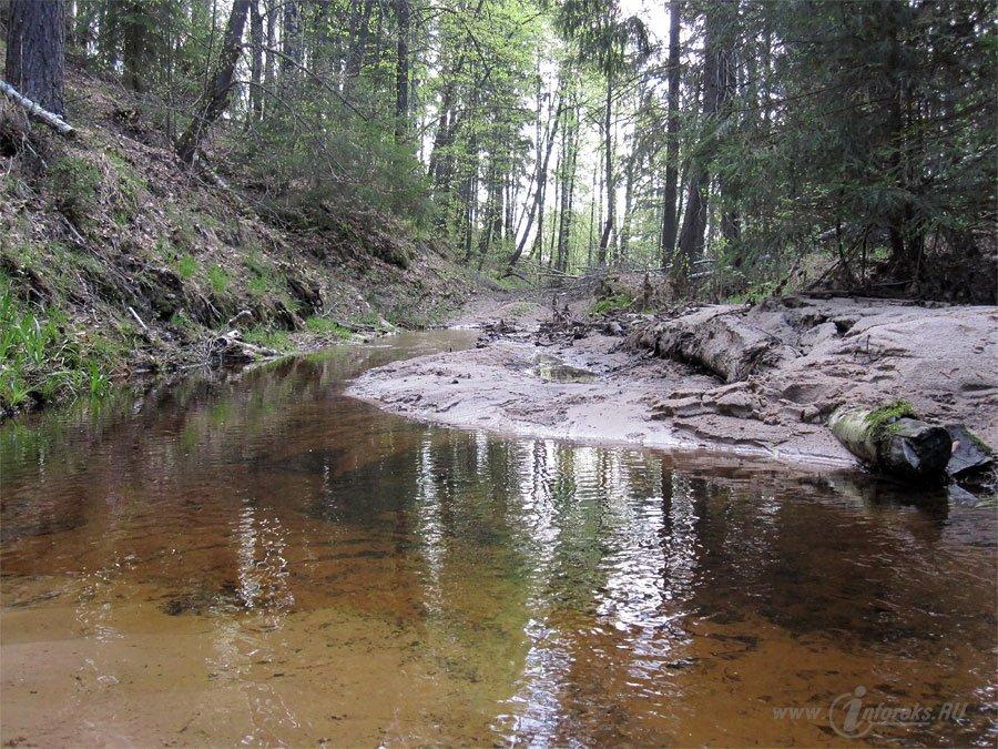 Река Колпь Мещерского края 53