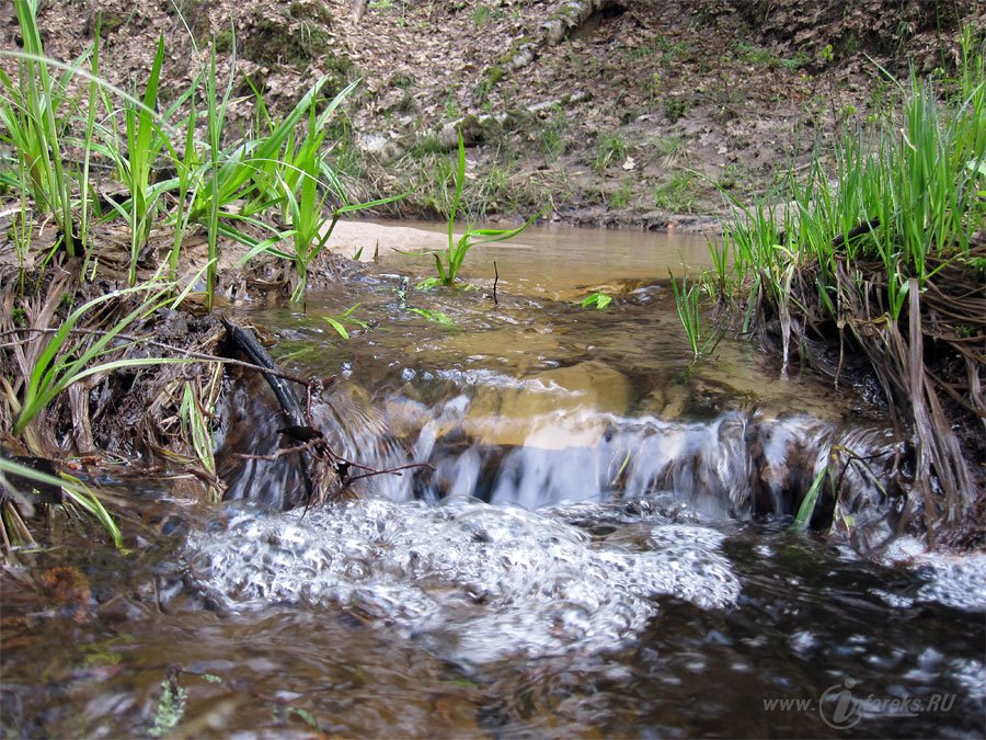 Река Колпь Мещерского края 55