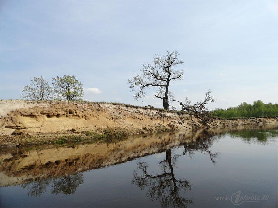 Река Колпь Мещерского края 11