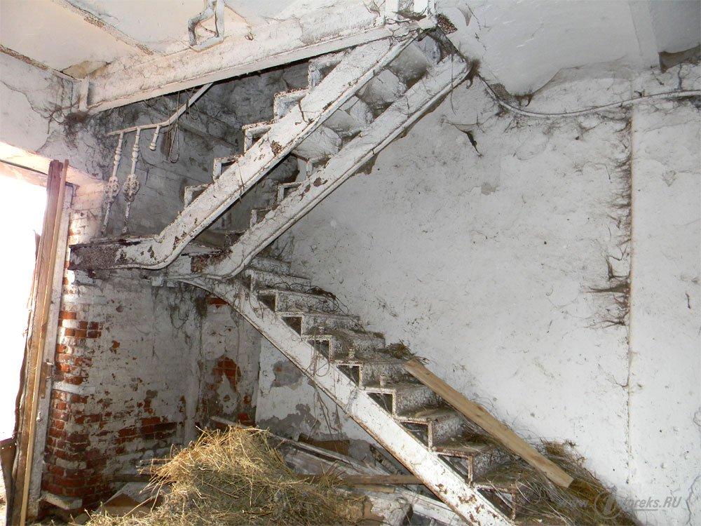 Старожиловский конный завод 25
