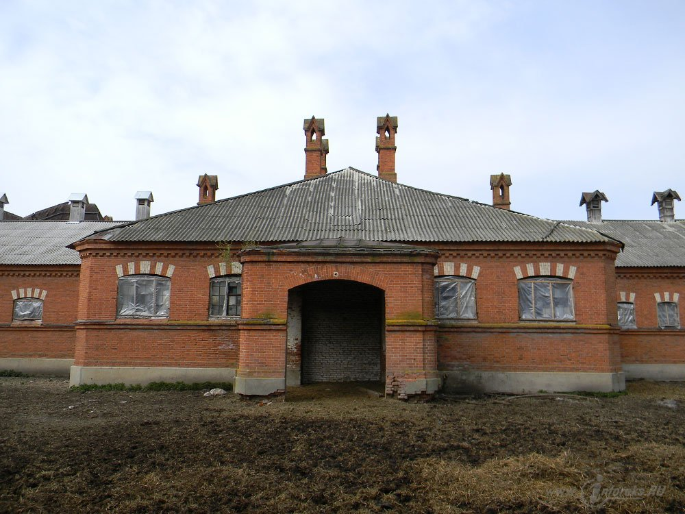 Старожиловский конный завод 35