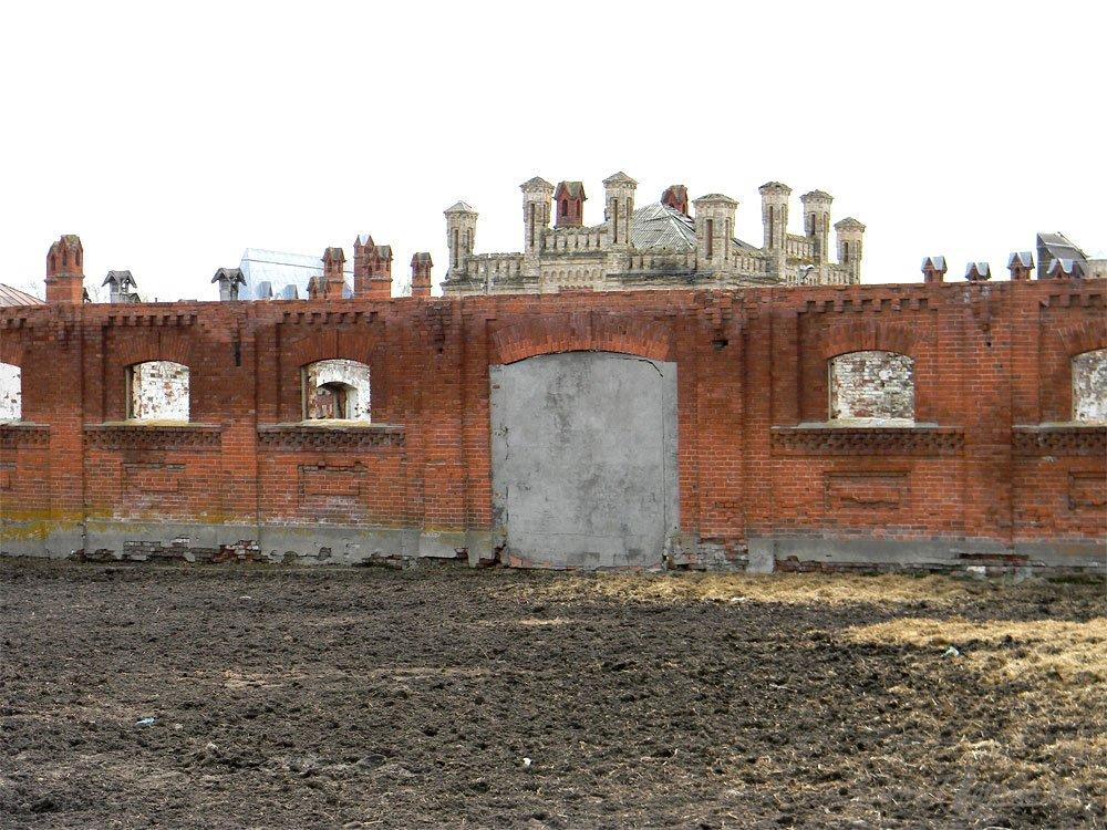 Старожиловский конный завод 69