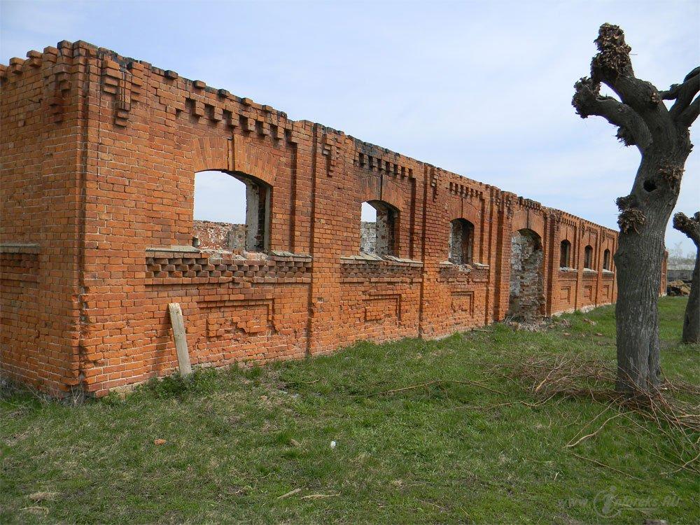 Старожиловский конный завод 71
