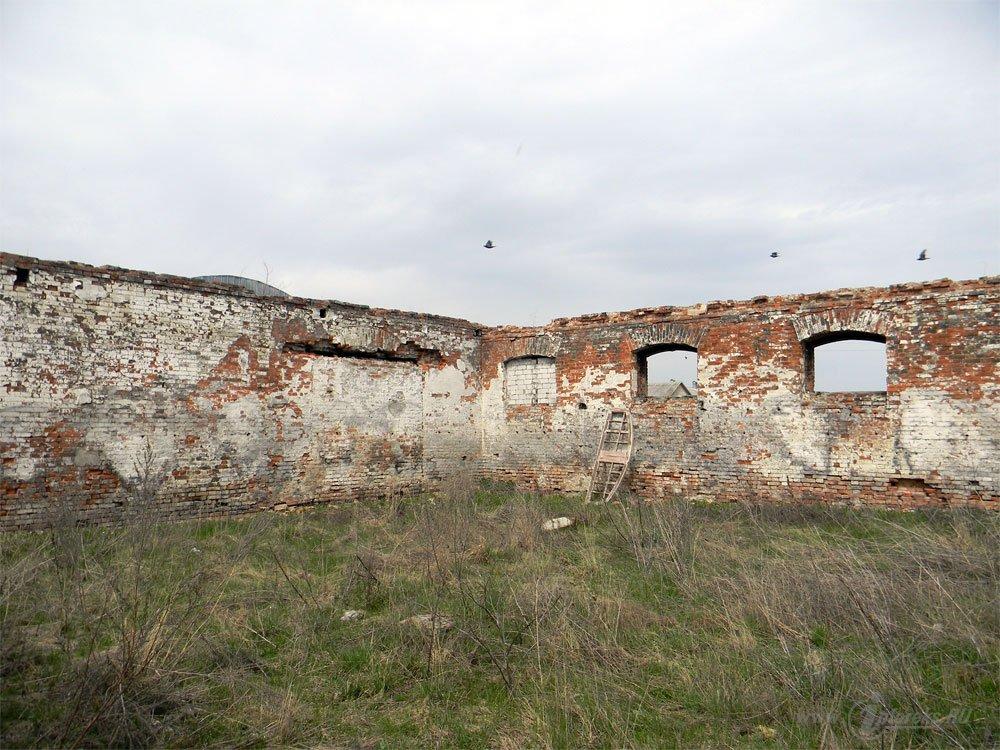 Старожиловский конный завод 75