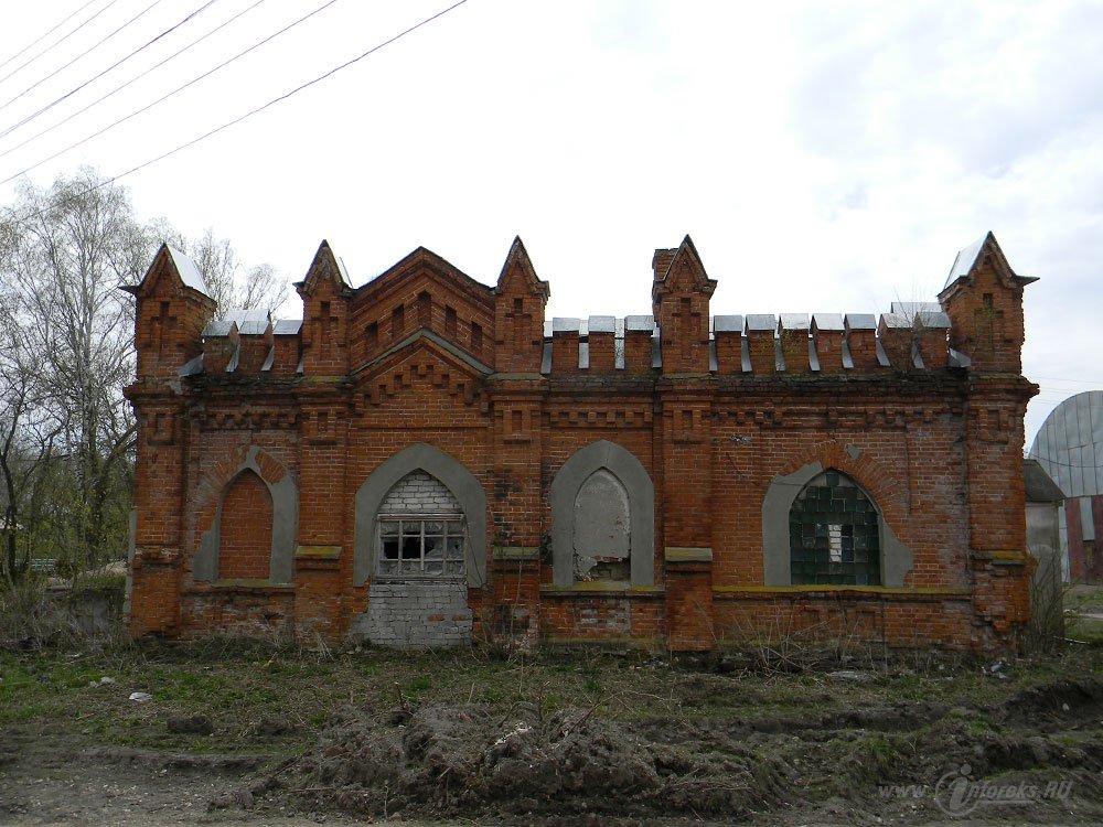 Старожиловский конный завод 85