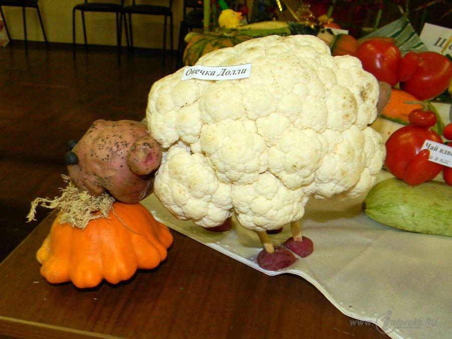 Вот что можно сделать из овощей и фруктов 9