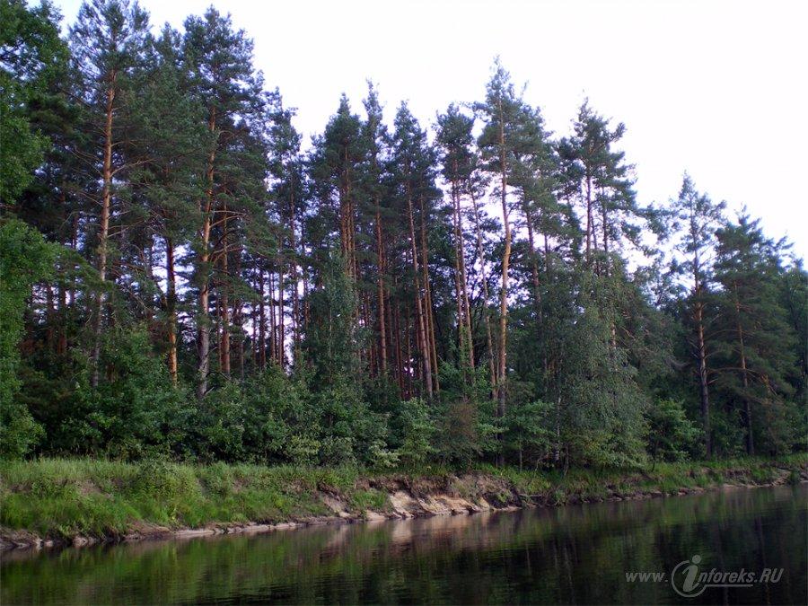 Река Пра 3