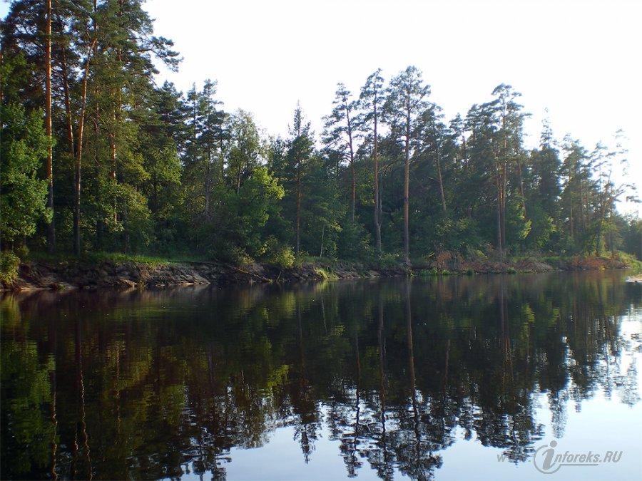 Река Пра 5