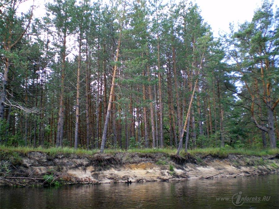 Река Пра 9