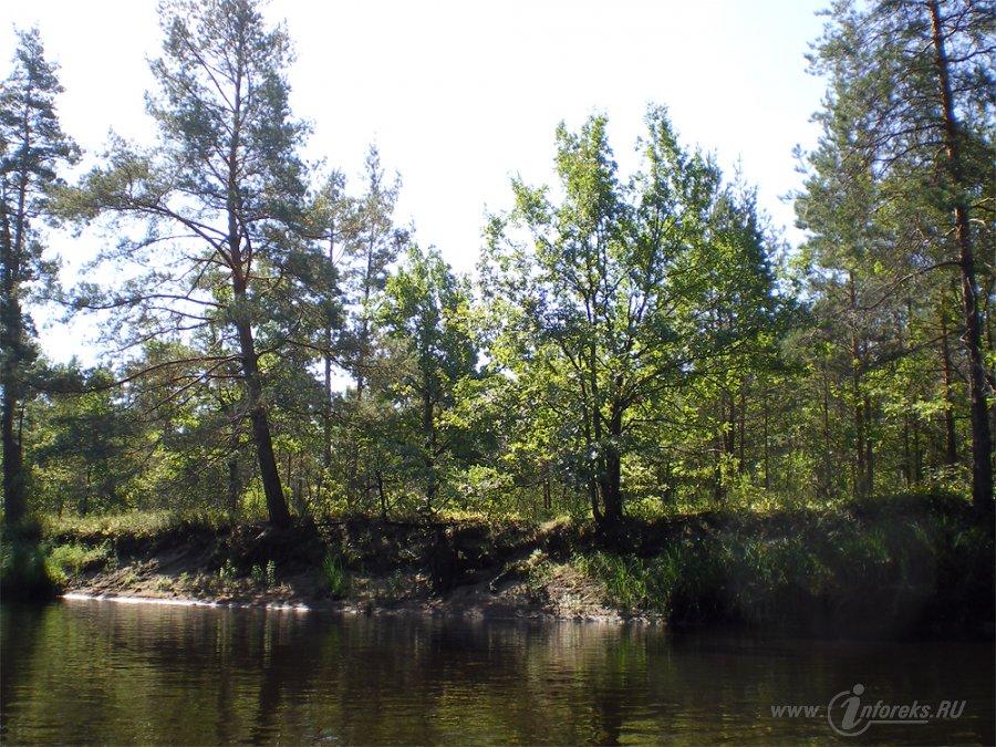 Река Пра 15