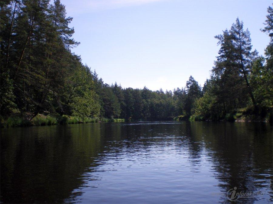 Река Пра 17