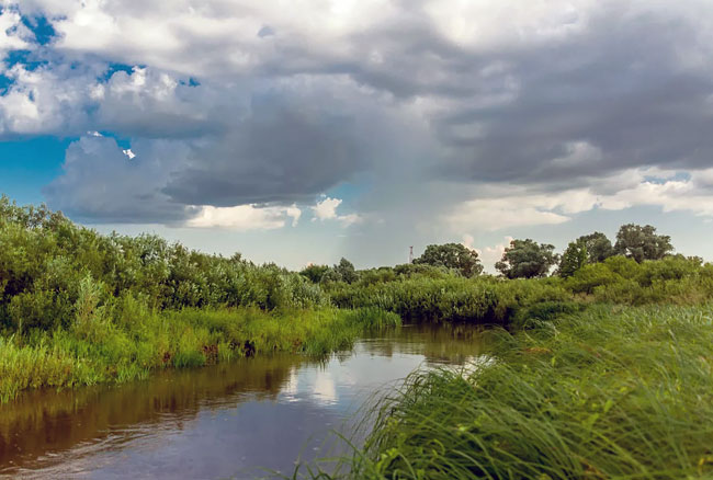 Случай на рыбалке на реке Старица в начале XX века 3